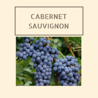 A Taste Of Cabernet